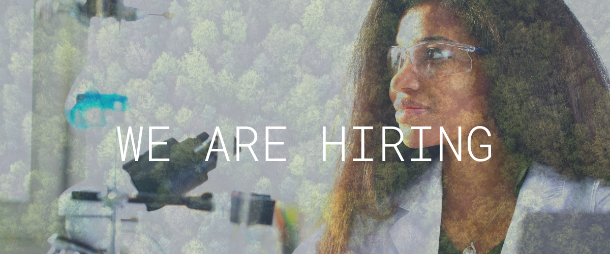 we are hiring plant chemist